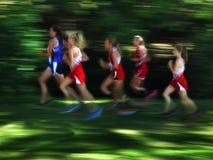 Suddigt lopp för flera kvinnalöpare Arkivbild