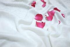 Suddigt rött steg blomkronor på en vit rynkig bedsheet arkivbilder