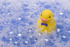 Suds and ducklind Royalty Free Stock Images