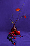sueño Imagen de archivo libre de regalías