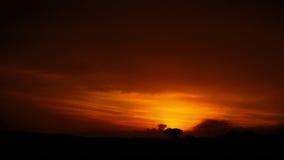Sueño anaranjado V Imagenes de archivo