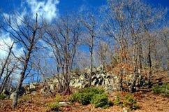 Sueño BG del valle de la montaña de Rodopi Fotografía de archivo libre de regalías