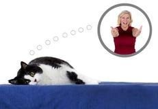 Sueño con la adopción del animal doméstico Imagenes de archivo