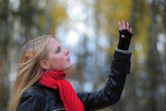 Sueño del blonde Imagen de archivo libre de regalías