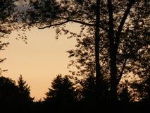 Sueño en la puesta del sol Fotografía de archivo