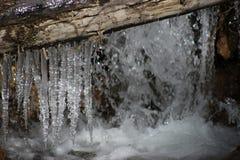 Sueños congelados Fotos de archivo libres de regalías