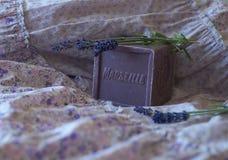 Sueños de la lavanda en Provence Imagen de archivo