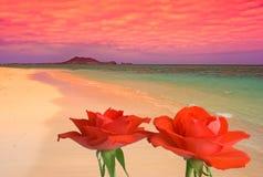 Sueños de la playa Fotos de archivo libres de regalías