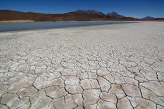 Suelo agrietado Laguna Honda Departamento de Potosà bolivia imagen de archivo