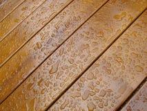 Suelo de madera de la teca Foto de archivo libre de regalías