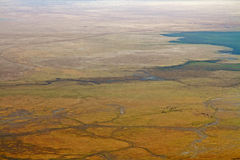 Suelo del cráter de Ngorongoro con la manada del búfalo Foto de archivo libre de regalías