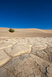 Suelo del desierto de Death Valley foto de archivo