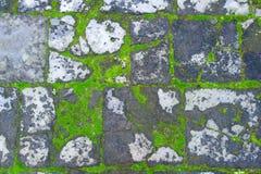 Suelo del ladrillo Imagen de archivo