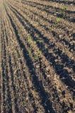 Suelo fértil, arado de un campo agrícola Foto de archivo libre de regalías