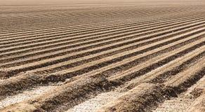Suelo preparado del campo de granja Foto de archivo libre de regalías