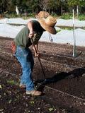 Suelo preparado voluntario en la granja de la comunidad Imagenes de archivo