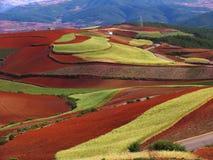 Suelo rojo de Yunnan seco Fotos de archivo libres de regalías