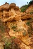 Suelo rojo del gongoni, Benga del oeste, la India Fotografía de archivo libre de regalías