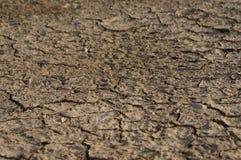 Suelo seco Foto de archivo libre de regalías