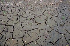 Suelo seco Foto de archivo