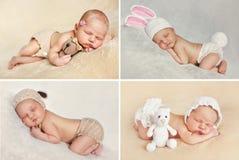 Sueño pacífico de un bebé recién nacido, un collage de cuatro imágenes Foto de archivo