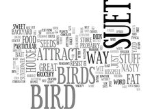 A Suet Way To Attract Birds To Your Yard Word Cloud Stock Images
