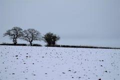 Suffolk de Shimpling na neve imagem de stock
