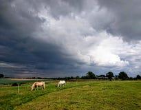 Suffolk nieba Zdjęcia Royalty Free