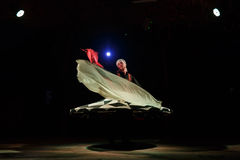 Sufi dancer spins Royalty Free Stock Images