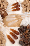 Sugar. Collection of various types of sugar Royalty Free Stock Photography