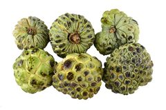 Sugar apple or Anon. Sugar apple or Anon on a tropical country royalty free stock photos