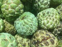 Sugar Apple or Atis Royalty Free Stock Photo