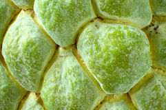 Sugar apple close up Stock Photos