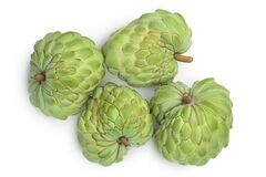 Sugar apple or custard apple isolated on white background with clipping path . Exotic annona or cherimoya fruit. Top