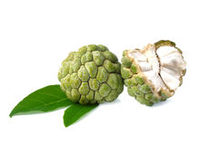 Sugar Apple fruit Stock Images