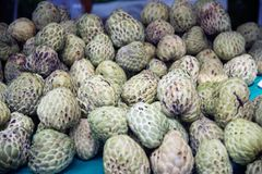 Sugar-apple fruit Annona squamosa on table for sell in market. Sugar-apple fruit Annona squamosa on table for sell in market of the tropical fruit that also Royalty Free Stock Image