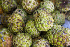 Sugar-apple tropical fruit Stock Photography