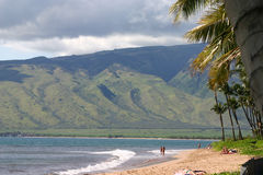 Sugar Beach located on Mahalaha Bay in Maui. Beautiful Sugar Beach on Mahalaha Bay, with its palm trees, sandy beach, view of the West Maui Mountains, and sugar Stock Photography