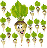 Sugar beet cartoon with many expressions Royalty Free Stock Photos