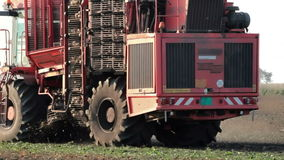 Sugar beet harvester stock video