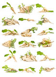Sugar beets Royalty Free Stock Photos