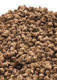 Sugar beets in the field Stock Photo