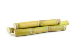 Sugar cane Stock Photos