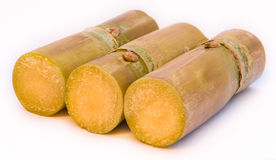 Sugar cane. Sweet and helthy sugar cane Stock Photo