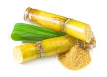 Sugar Cane. Raw sugar  on white background Stock Images