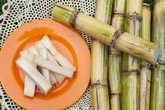 Sugar Cane Lizenzfreie Stockbilder