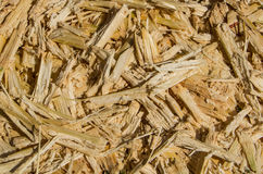 Sugar cane bagasse Royalty Free Stock Photography
