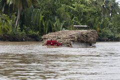 Sugar Cane Barge Royalty Free Stock Photo