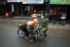 Sugar cane cambodia Stock Images