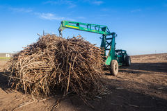 Sugar-Cane Crop Loader Tractor Royalty Free Stock Photos